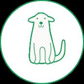 対象診療動物・犬