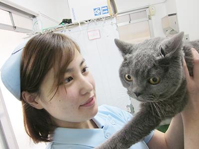川口市の動物病院「どうぶつのセンター病院」の診療時間
