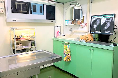 川口市の動物病院「どうぶつのセンター病院」の診療室