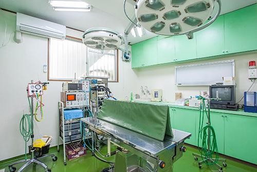 川口市の動物病院「どうぶつのセンター病院」の手術室
