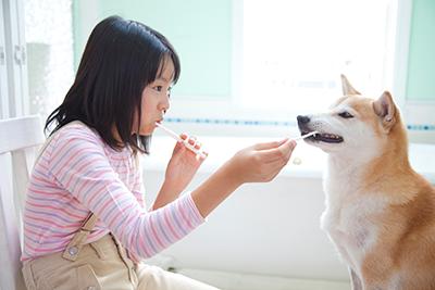 歯石の除去(犬・猫)